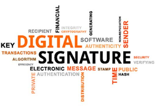 Functioning of Digital Signatures in Cryptographic Algorithms