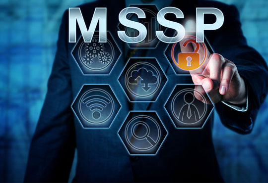Points to Consider Before Choosing a Managed Security Service Provider (MSSP)