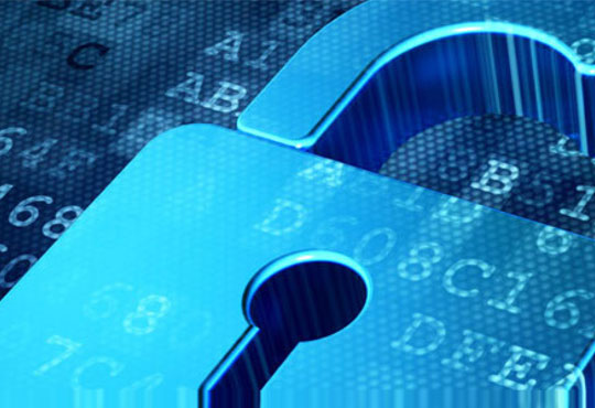 The Way toward a Diligent Security Environment