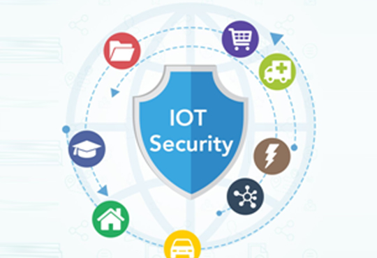 Can FPGAs Offer Robust IoT Security?