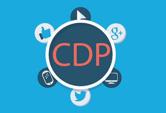 Primer on Customer Data Management Strategy