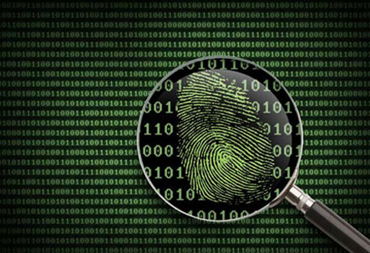 Introducing New Authentication Techniques to Prevent Synthetic ID Frauds