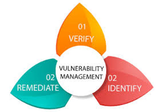 Vulnerability Management - A Business's Cyber Shield